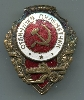 Excellent Machine-Gunner's Badge, #1