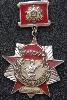 2 Guards Army Veteran Badge