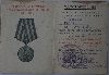 Guglya VoG and Druzhinnik Badge docs